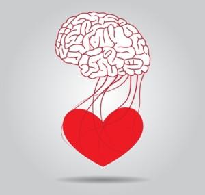 srdce a mozog